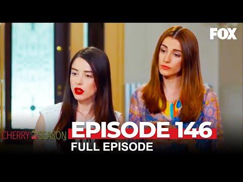 Cherry Season Episode 146