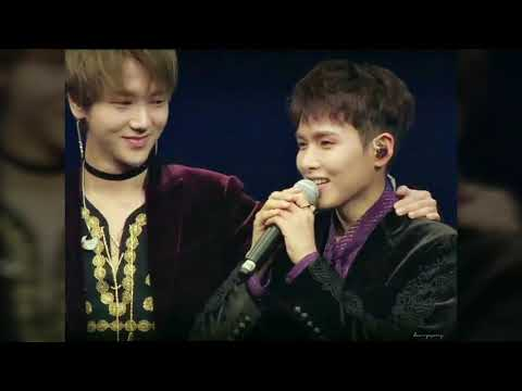 YeWook Moment Compilation (Yesung - Ryeowook)