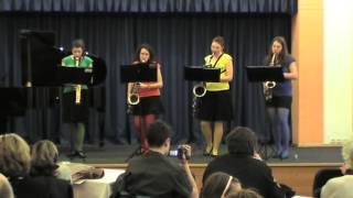 Video Ozvěny z hudebních síní
