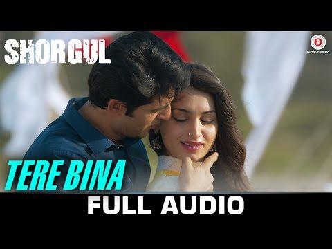 Tere Bina Audio FULL SONG SHORGUL Suha Gezen Aniruddh