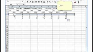 Microsoft Excel 2003 Basic 3 (Auto sum, fill handle, format text)