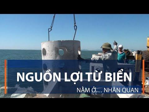 Nguồn lợi từ biển nằm ở… nhãn quan | VTC1 - Thời lượng: 2 phút, 52 giây.