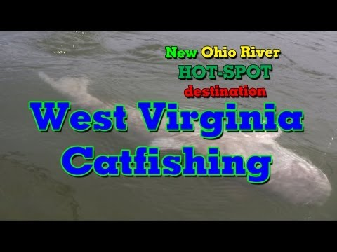 Catching Big Catfish From The Ohio River