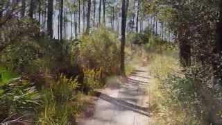 Travel To Florida: Bike Ride Through Jolee Island Nature Park, Sandestin Golf And Beach Resort