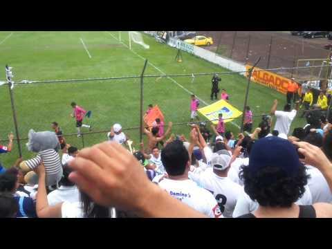 Entrada de Alianza FC - Ultra Blanca - La Ultra Blanca y Barra Brava 96 - Alianza