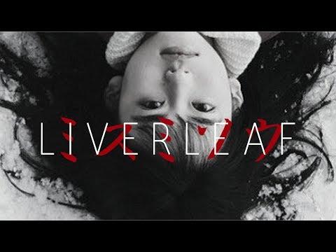 extreme japanese horror // liverleaf review