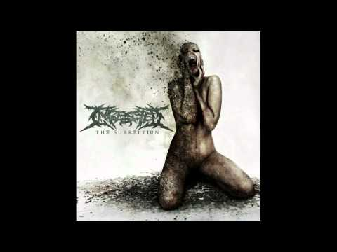 Ingested - Castigation and Rebirth (NEW SONG 2011) With Lyrics online metal music video by INGESTED