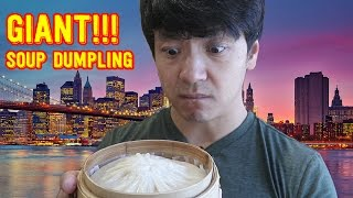 In this video I sought out the popular XL Soup Dumpling Xiao Long Bao in Drunken Dumpling in New York City...here is my review...