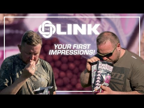 Mainline Baits TV - 'The Link' Your First Impressions!