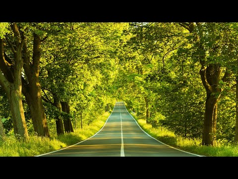 Relaxing Background Guitar Music - Meditate, Focus, Study, Think