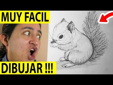 Como dibujar una Ardilla paso a paso [El Dibujante] (видео)