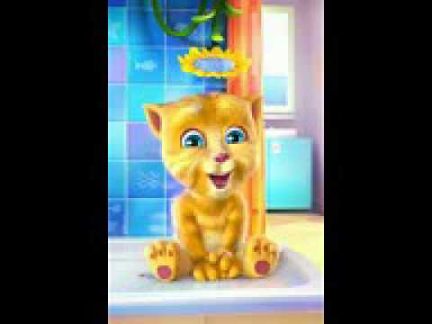 Talking Tom    New Punjabi Videos 2015    Whatsapp Video Funny   YouTube
