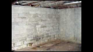 Guide To Damp Proofing Your Cellar - Basement Systems UK