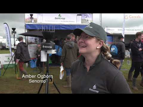 Cereals 2019 Official Event Video