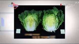 video thumbnail Microbial Fertilizer, Soil Improvement and Crop Growth, Plant Immunity Booster youtube