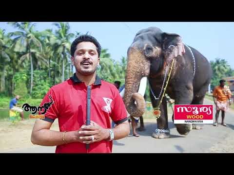 Video Parannur Nandan (aanaperuma epi-40) download in MP3, 3GP, MP4, WEBM, AVI, FLV January 2017