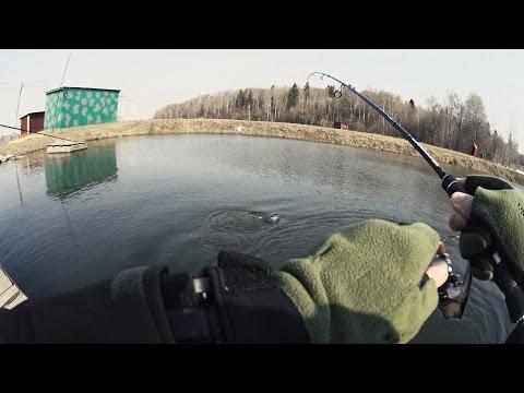 ловля форели воблерами на платнике видео