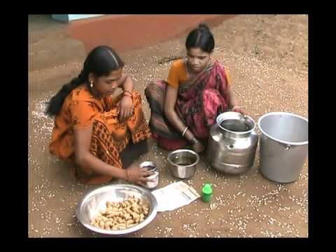 Ginger seed treatment Oriya Pragati Odisha