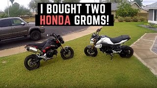 4. I Bought 2 Honda Groms Used on Craigslist | 2015 vs 2017 | How Much did I Pay?