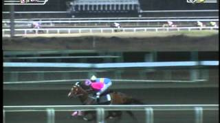 RACE 6 HEADLINE CHASER 03/06/2014