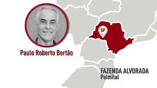 SP - Palmital - Paulo Roberto Bertão