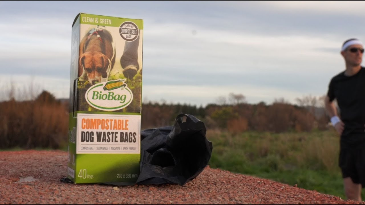 YouTube placeholder image shows dog waste bags in a park.