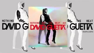 Thumbnail for David Guetta ft. Ne-Yo Akon — Play Hard