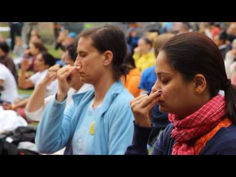 International Yoga day Celebration in Vienna in Austria 2015
