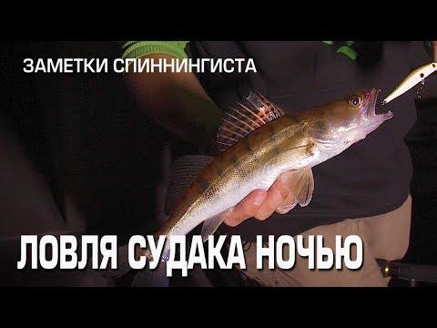 судака на воблер на каналах