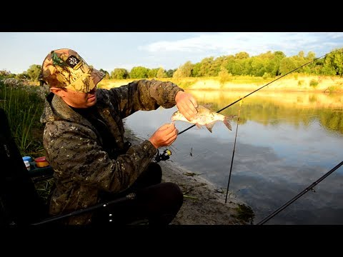 ютуб фидерная рыбалка на реке видео