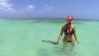 Palm Beach Aruba  city pictures gallery : Snorkel at Palm Beach, Aruba