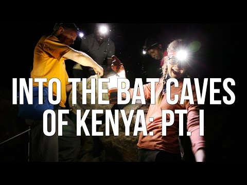 caves - In January 2014, Emily accompanied Curator of Mammals Bruce Patterson on a field expedition into the bat caves of Kenya. They were joined with Field Museum Media Producers Greg Mercer and ...