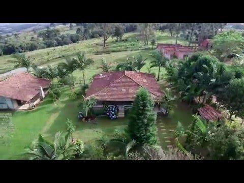 Colônia Quero-Quero - Palmeira - PR - Drone