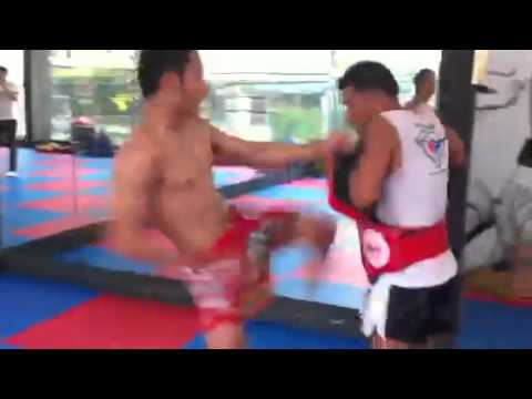 Muay Thai Kick Machine