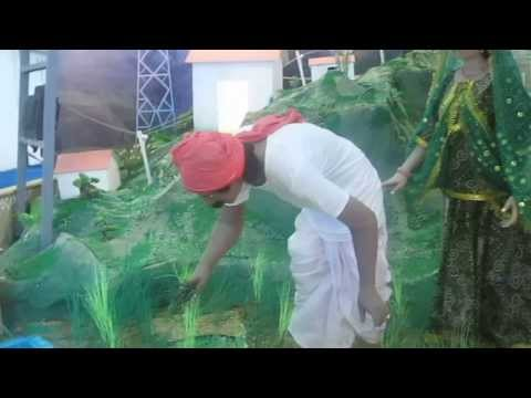 Rural Electrification by Green Energy Solutions – IITF 2013