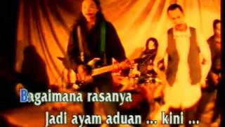 Download Lagu JAMRUD   ayam Mp3