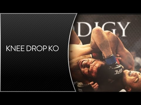Felony Fights Knee Drop