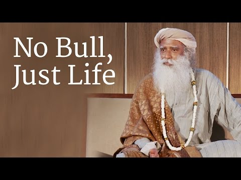 No Bull, Just Life | Sadhguru