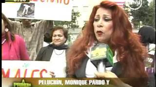 LEY DE PROTECCION ANIMALNO A LA CORRIDA DE TOROSPELUCHINTOÑIZONTE MONIQUE PARDO