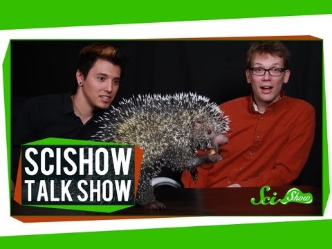 Hank and Michael Meet an Alien%3A SciShow Talk Show %234