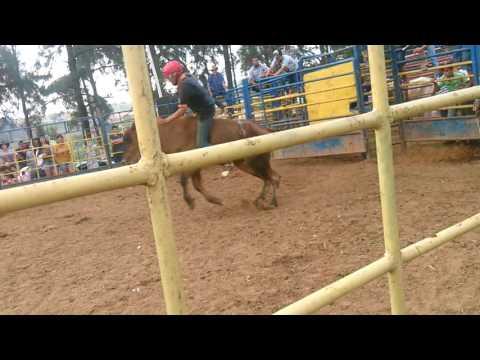 Rodeio de Santo Antônio de posse