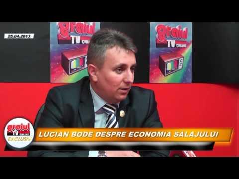 Lucian Bode Despre economia Salajului