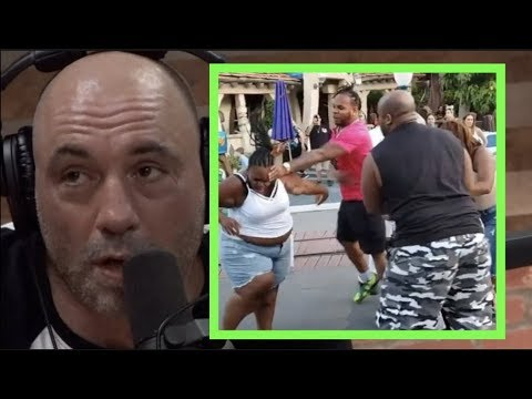 Joe Rogan on the Disneyland Fight Video