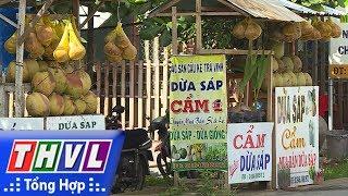 hịp sống Trà Vinh: Quê hương dừa sáp