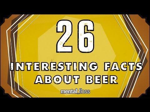 26 Interesting Facts About Beer