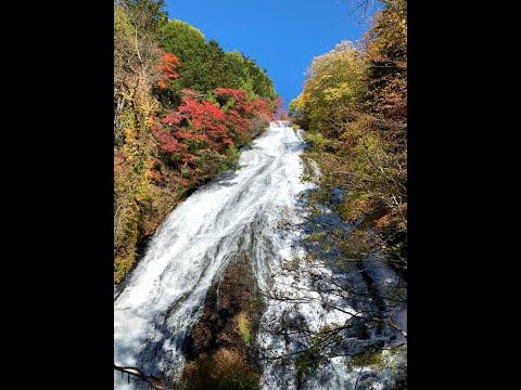 紅葉の湯滝(提供:湯滝レストハウス)