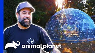 Antonio Builds A Flying Space For 23 Rescued Birds | Animal Cribs by Animal Planet