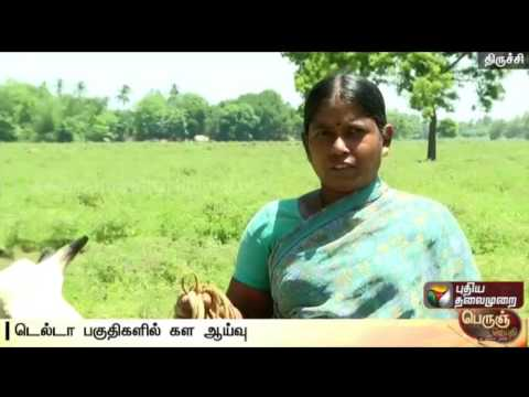 20-000-acre-agriculture-lands-depends-on-Cauvery-water-in-Trichy-Details