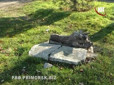 У Приморському садку «Вербиченька» питання безпеки вирішують самостійно