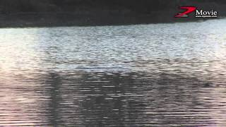 ZBLフェイキードッグCB/DS 水中動画